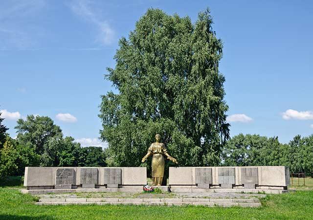 Монумент погибшим воинам односельчанам в селе Боровица