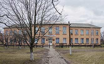 Школа в селе Боровица