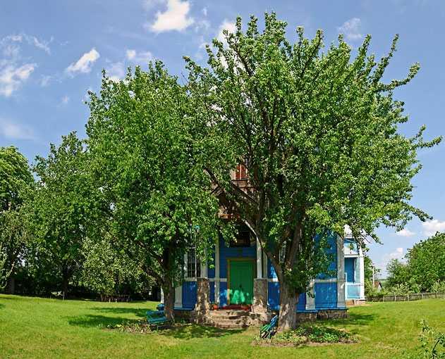 Праздник-Успенская Церковь Пресвятой Богородицы в селе Грушковка
