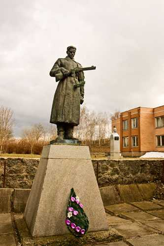 Памятник неизвестному солдату в селе Жаботин