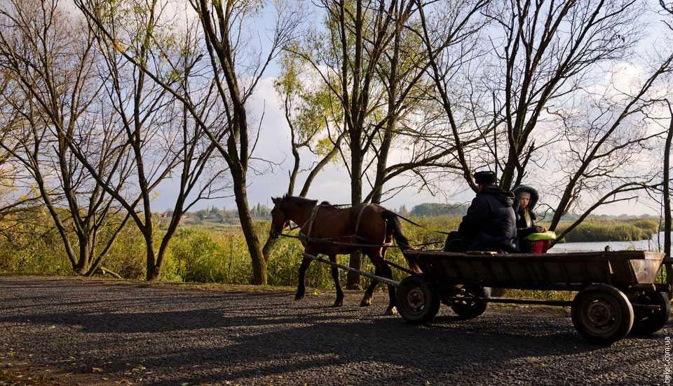 Дорога в Скориковку