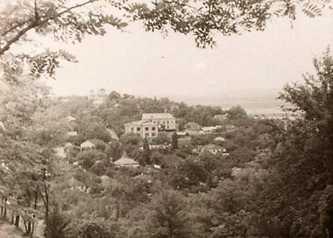 Вид на центр Канева и Успенский собор