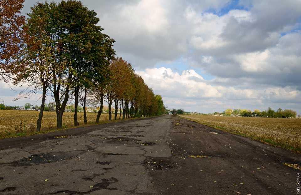 Дорога на Львовку
