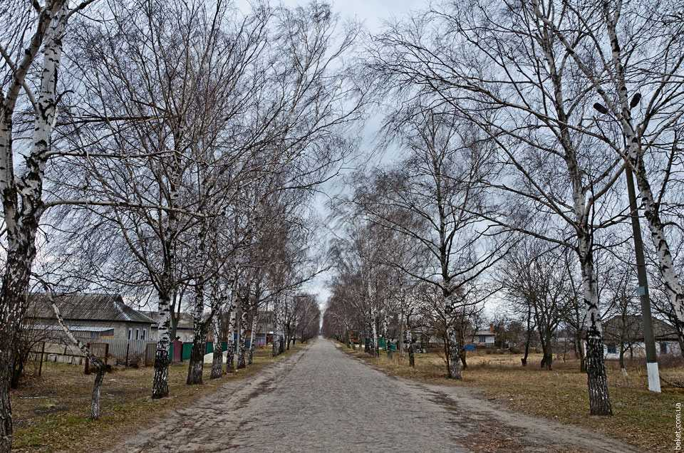 Сагуновка