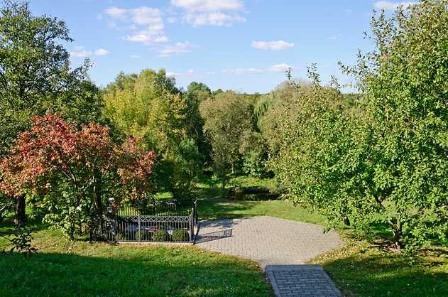 Вишневый сад возле хаты родителей Шевченка