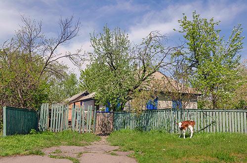 Частный дом в селе Старый Коврай