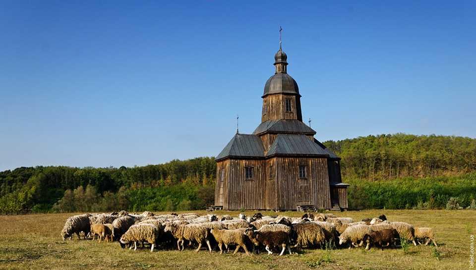 Николаевская церковь в селе Стецовка