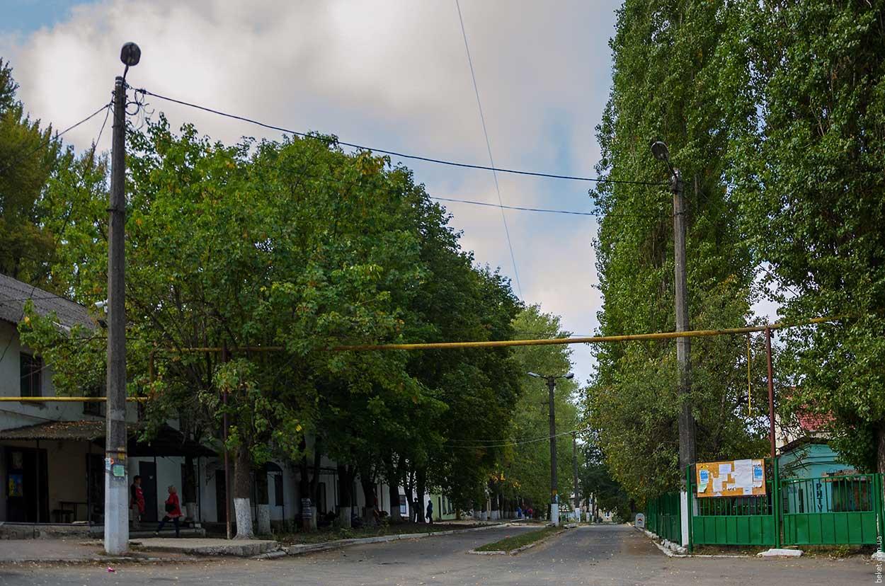 Зеленогорское